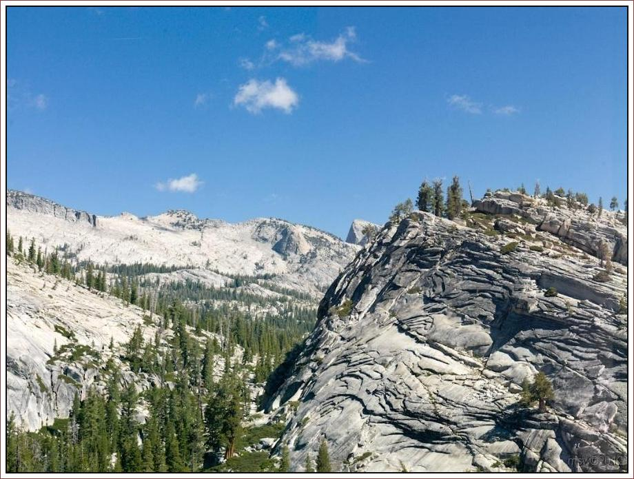 2807 Yosemite Hatchy Hatchy Valley June 2012.jpg