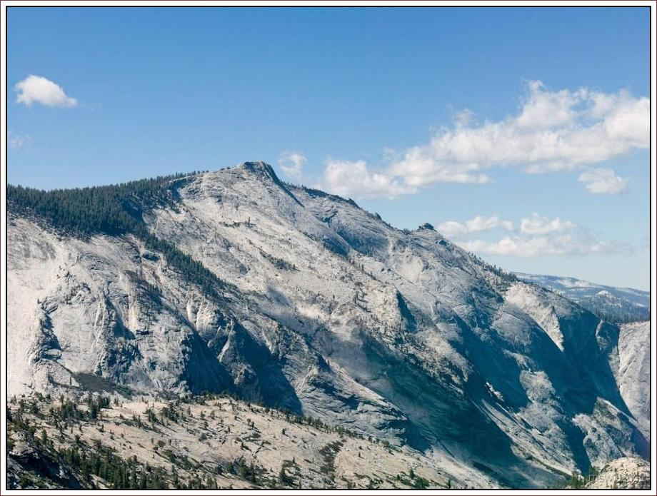 2810 Yosemite Hatchy Hatchy Valley June 2012.jpg