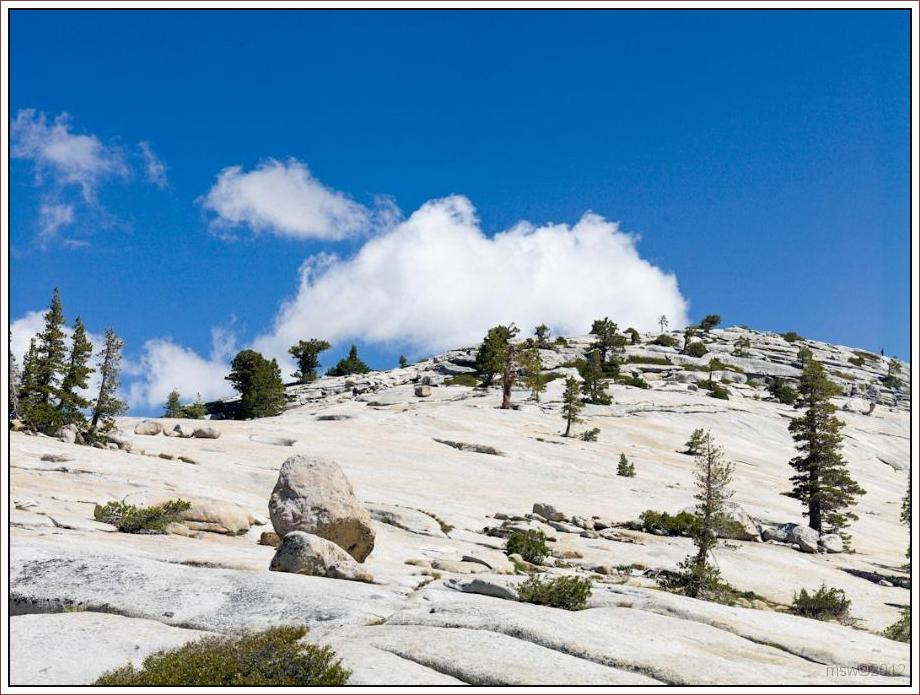 2811 Yosemite Hatchy Hatchy Valley June 2012.jpg