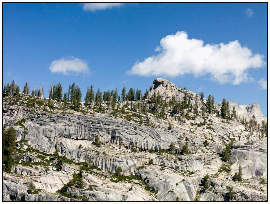 2808 Yosemite Hatchy Hatchy Valley June 2012.jpg