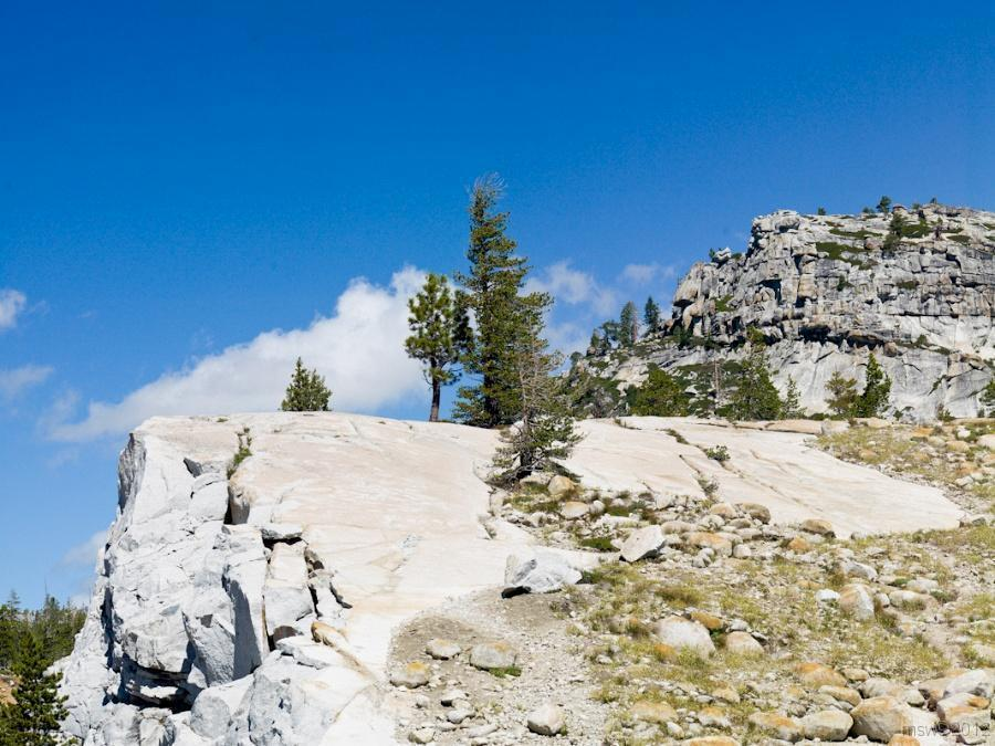 2812 Yosemite Hatchy Hatchy Valley June 2012.jpg